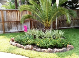 Houston Patio Borders Image 15