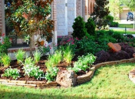 Houston Patio Borders Image 5