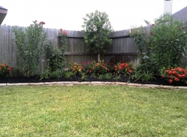 Houston Patio Borders Image 16